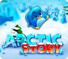 Arctic Story játék