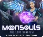 Moonsouls: The Lost Sanctum Collector's Edition játék