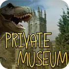Private Museum játék