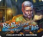 Reflections of Life: Dream Box Collector's Edition játék