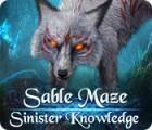 Sable Maze: Sinister Knowledge Collector's Edition játék